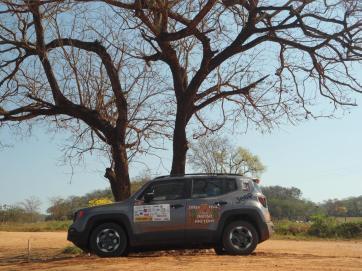 O Jeep Renegade do projeto