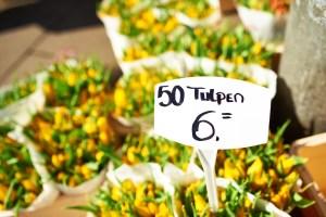 Tulip Festival Amsterdam Shop
