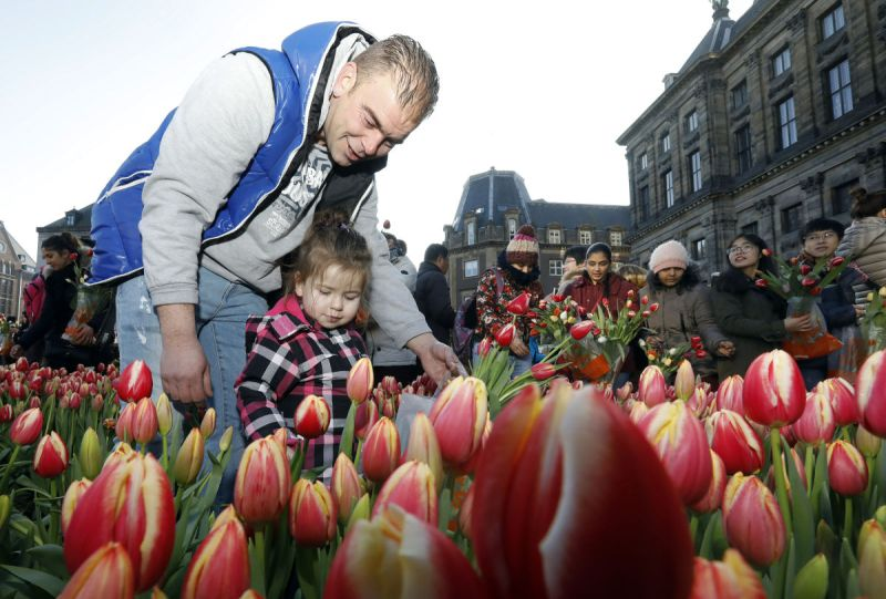 National Tulip Day Amsterdam