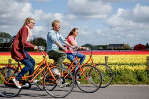 guided cycle tour