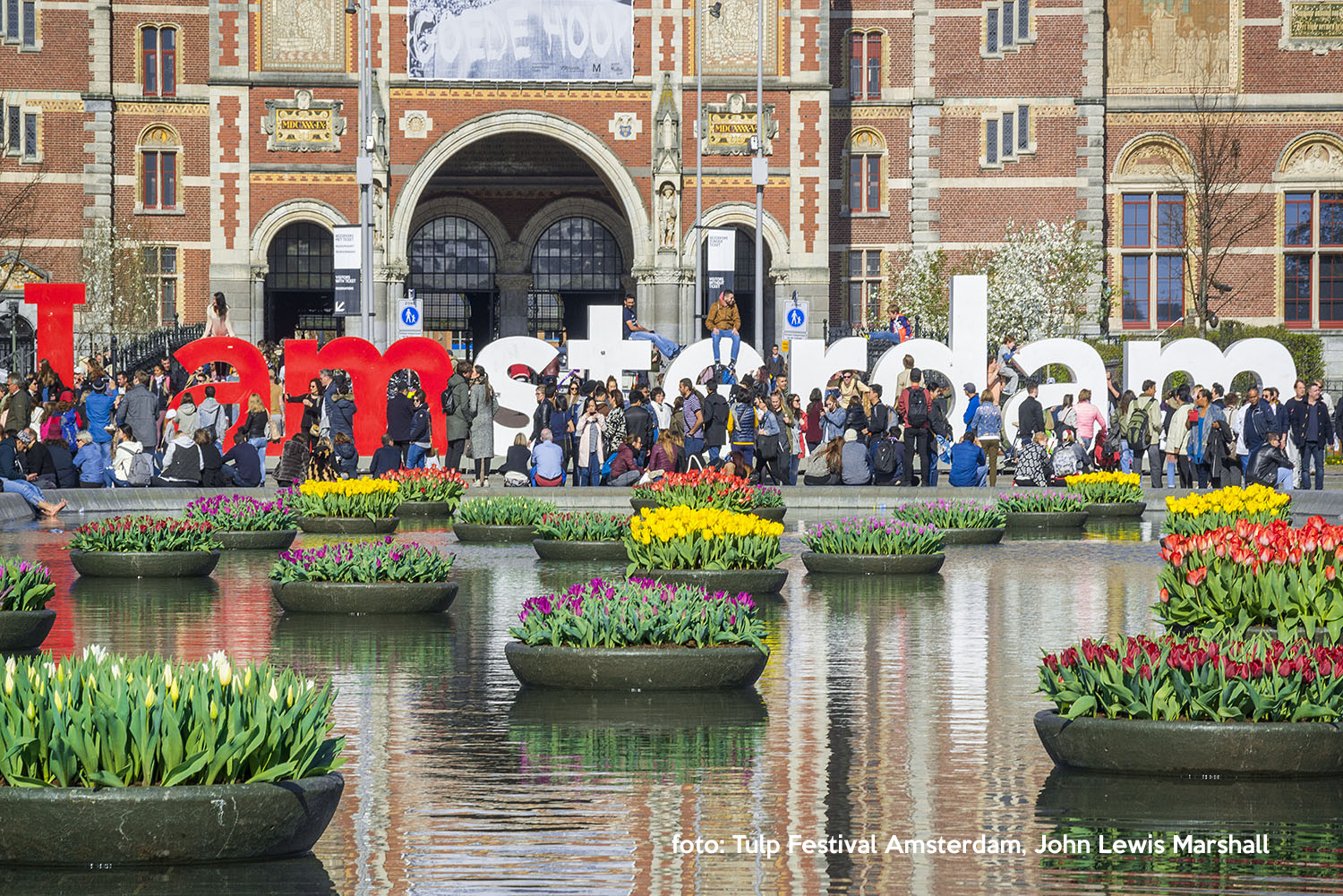 Best Time To See Tulips In Amsterdam 2020 Tulp Festival 2020   Tulip Festival Amsterdam