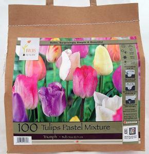 Tulip bulb mix