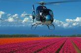 helicopter flight tulip fields Amsterdam