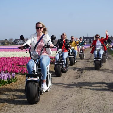 Sightseeing scooters
