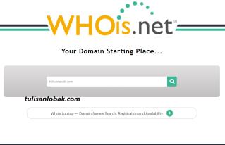 cek usia domain