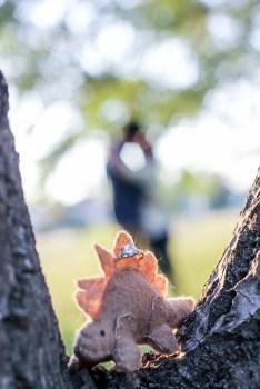 wedding-photography-canberra
