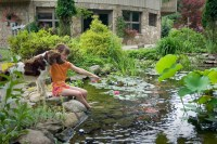 Waterscapes Create Beautiful Backyards | Tullyvale Post