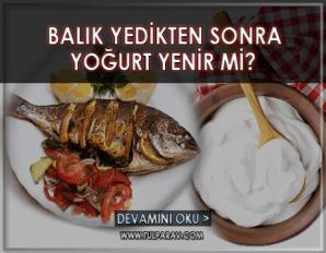 Balık Yedikten Sonra Yoğurt Yenir mi?