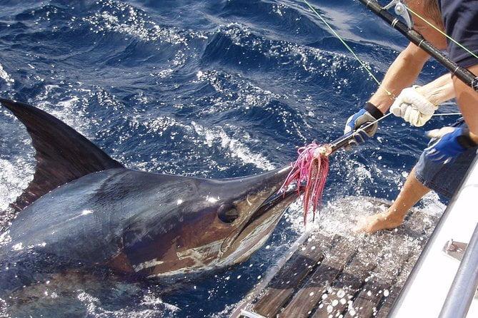 Big Game Fishing Kılıç Balığı