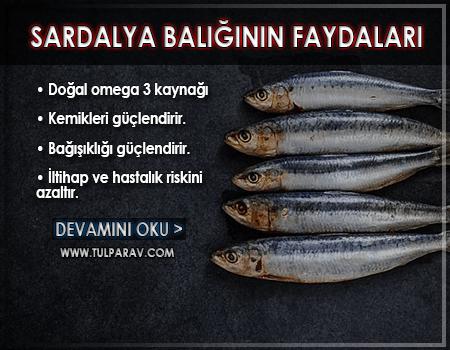 Sardalya Balığının Faydaları
