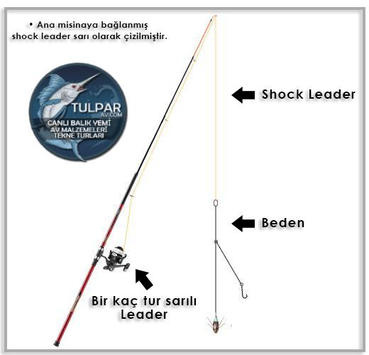 Shock Leader