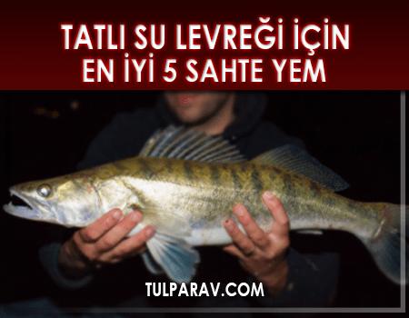 Tatlı Su Balığı İçin Sahte Yem