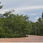 aldea zama development tulum