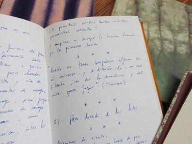 Cuadernística #4