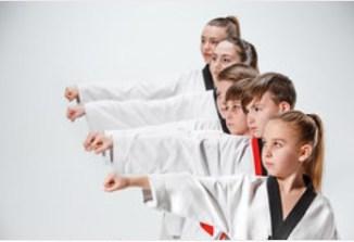 Taekwondo group