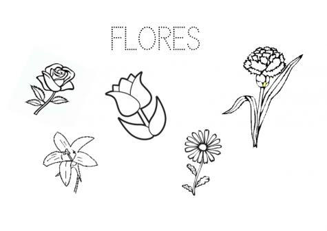 04.Cartel elección proyecto flores