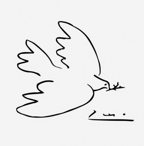 peace-dove-by-picasso-coloring-page