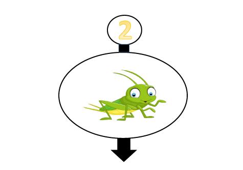 Animales saltarines. La tortuga, el cangrejo, el saltamotes y el leopardo_Página_2