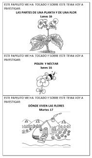 Temas para investigar sobre flores y mariposas_Página_1