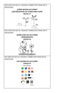 Temas para investigar sobre flores y mariposas_Página_2