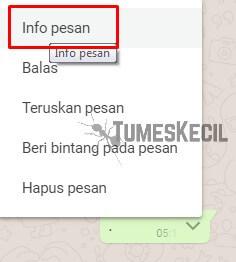 cara melihat read di grup whatsapp