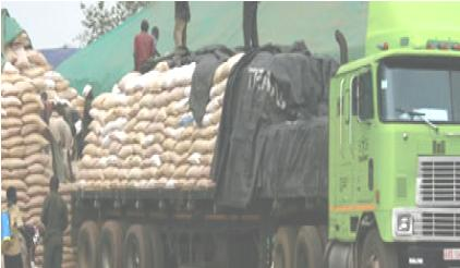 Tanzanians  Selling Maize To FRA