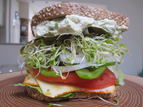A Gigantic Cheese and Vegetable Sandwich