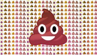 poop lots