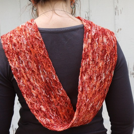 A hand knit long loop cowl in SoftnShiny hand dyed yarn
