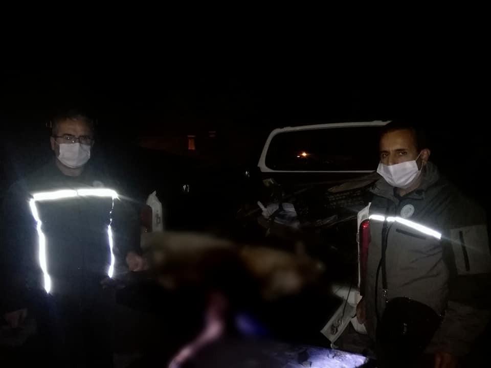 Yaban keçisi vuran 2 şahsa 55 bin 554 lira ceza
