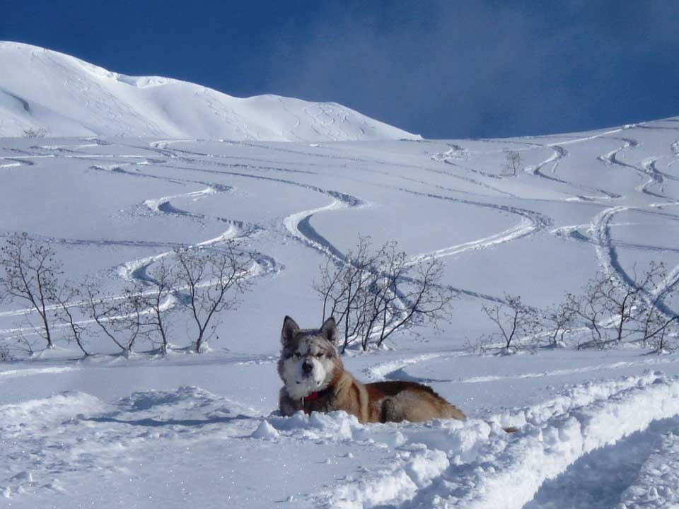 backcountry-skiing-04