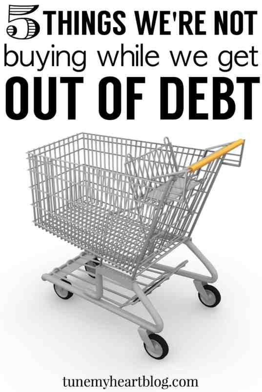 5 things we're not buying while we get out of debt - plus ideas for how to replace them.
