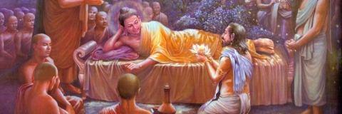 Những quả của bất thiện nghiệp mà Đức Phật phải thọ lãnh trong kiếp cuối cùng