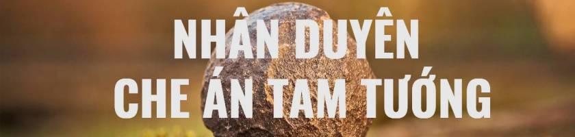 ha Duyen Che An Tam Tuong