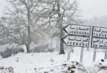 Photo of نشرة تحذيرية : تواصل تساقط الثلوج وتراكمها بالقصرين والكاف وسليانة وجندوبة وباجة.
