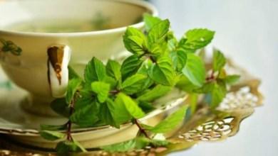 Photo of هل يساعد شاي النعناع على خسارة الوزن؟ إليكم الحقيقة