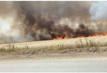 Photo of سليانة: حريق هائل ياتي على 70 هكتار من الحبوب