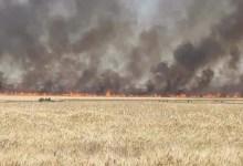 Photo of الحريق السابع في ظرف اسبوع بسليانة