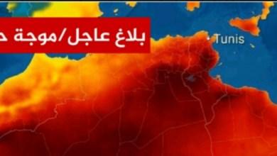 Photo of بداية من يوم غد : موجة حرارة غير مسبوقة و مهندسة بالمعهد الوطني للرصد الجوّي تحذر