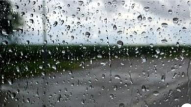 Photo of المعهد الوطني للرصد الجوي يحذّر من تدني مستوى الرؤية بسبب الأمطار