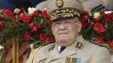 Photo of قايد صالح: سينعم الجزائريون بثروات البلاد عقب الرئاسيات