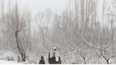 Photo of موجة برد تقتل 17 أفغانيا في يوم واحد