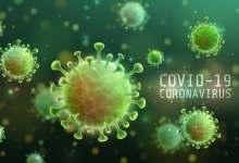 Photo of عالم فيروسات يكشف: كورونا خرج من مختبر صيني