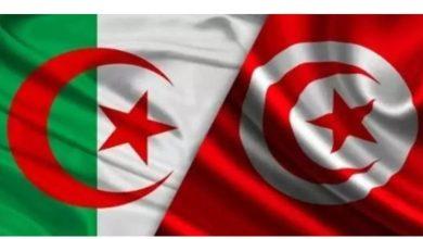 Photo of احتراما لتونس والتونسيين: قناة جزائرية توقف بث سلسلة تلفزية وتحيل فريقها على مجلس التأديب