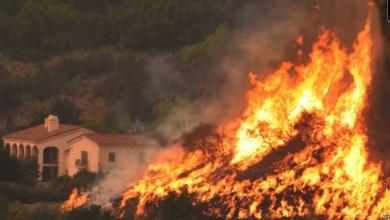 Photo of القصرين: حريق في إسطبل أغنام بمعتمدية العيون