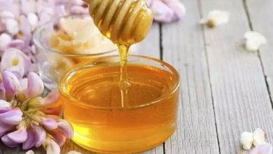Photo of طرق لاكتشاف العسل المغشوش