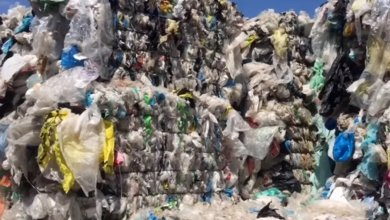 Photo of حاويات فضلات إيطالية محجوزة في ميناء سوسة: الديوانة تقدم تفاصيل جديدة