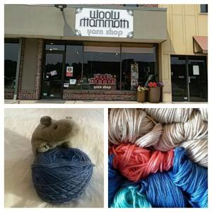 This was a fabulous yarn store and I wish I hadn't shopped for jeans so I could have spent more money here!! I left with a skein of beautiful gushy lace weight mink yarn - which my kittens got at the other day. I guess I'll just have to order more.....