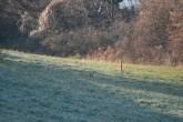 chemin-de-chatruffe_1185