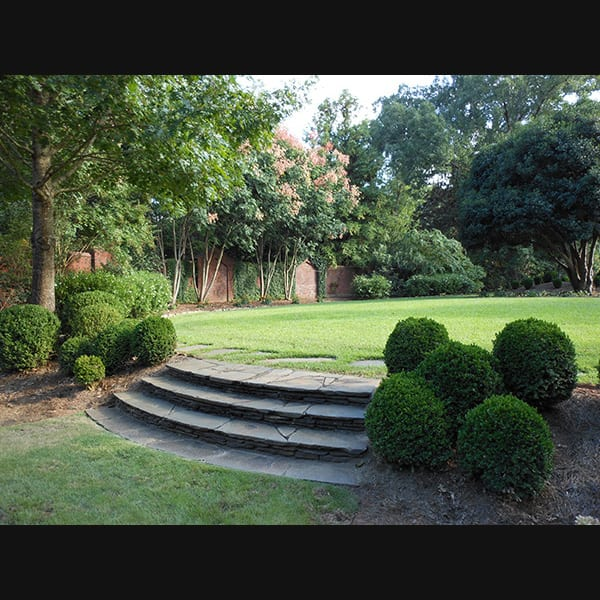 Boxwoods and stone steps at a residence in Lagrange, Georgia, landscape designed by Tunnell and Tunnell Landscape Architecture.